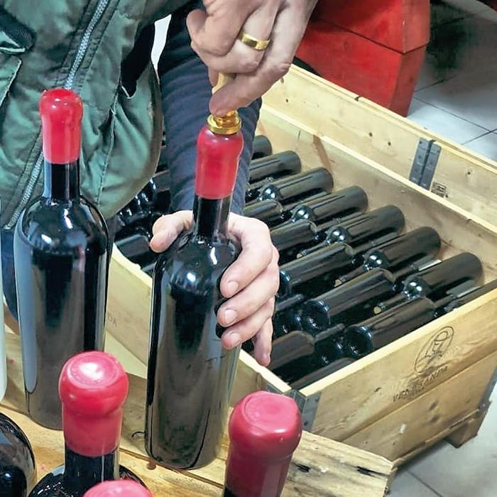 lavorazione del vino La Veneranda